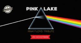 Pink Lake – Live at Jazzino